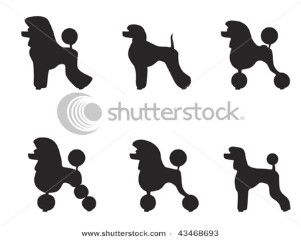 poodle cartoon images - Google Search