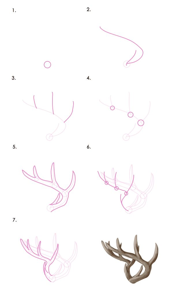 In this tutorial we're going to learn about the majestic deer. No matter if it's a huge moose, or a small and timid roe deer, after this lesson you'll know how to draw every one of them with correct anatomy and colors - and those beautiful antlers of theirs! | Tags: Drawing, Vector