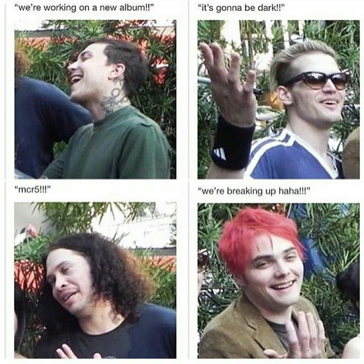(Face palms while grinning like an idiot) I hate you all why did you do this to me?! (Is conflicted between wanting to laugh out loud and wanting to murder somebody (so in other words the constant emotions of the entire MCR Fandom))