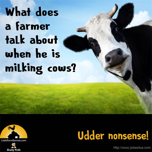 What does a farmer talk about when he is milking cows?