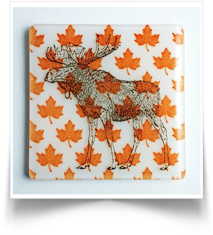Canadiana Moose Coasters