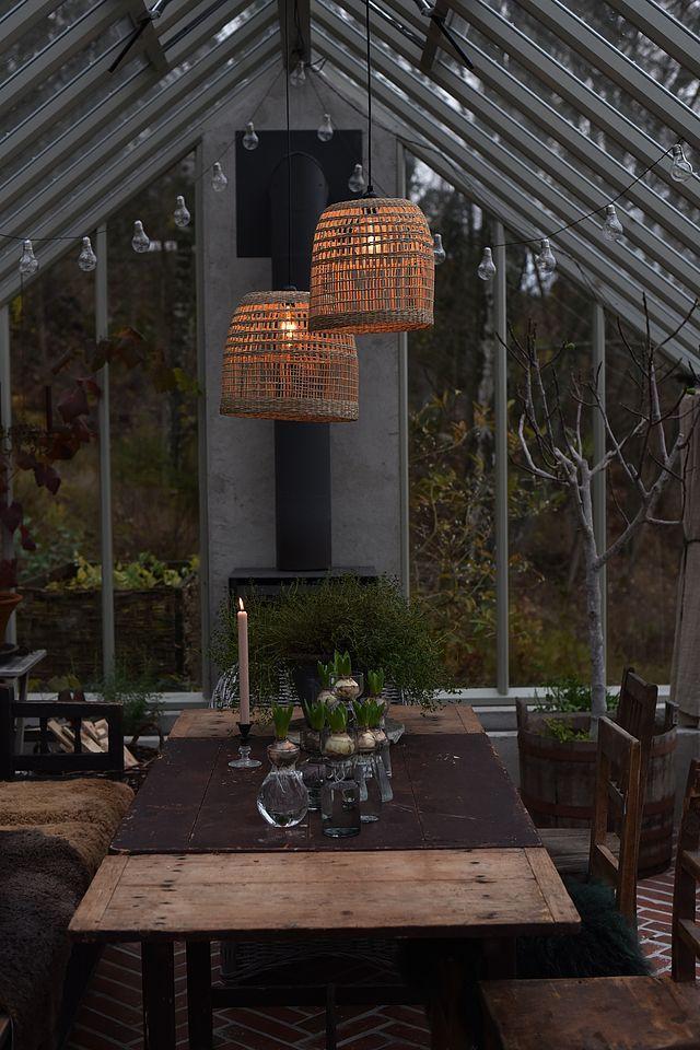 Växthusstädning, osämja och lampskärmar