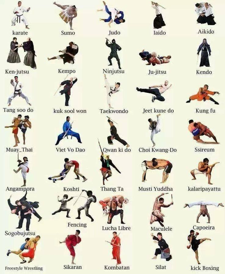 Ahhhh so cool I love. Different kinds of Martial Arts