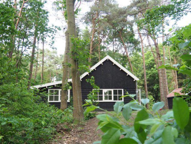 Boshuis Friesland | Boek nu één van onze boshuizen in Appelscha