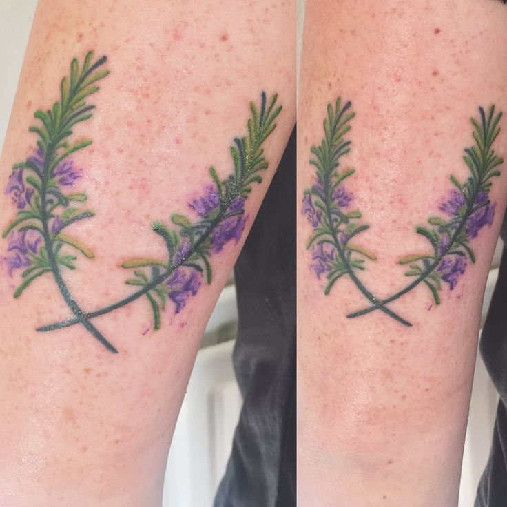 Rosemary Tattoos: 88 Best Tattoos Images On Pinterest