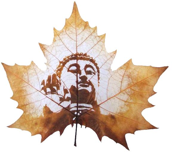 Leaf carving art is one of the newest art forms in recent years. It's inspiration comes from the beauty of nature. Creating leaf art is a long and complex process. Selective leaves are carefully chosen from the Chinar tree which is native to India, Pakistan and China.  Leaves are put through a 60 step ...