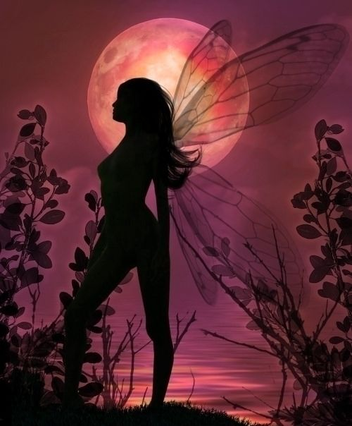 faery.  Many think that faery have gossamer wings, and are delicate.  Depending on where you are in the world, and your beliefs, depends on the name of these beings and what they appear as to you