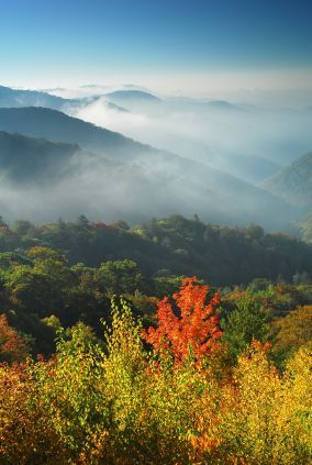 Ridge upon ridge of forest straddles the border between North Carolina and Tennessee in Great Smoky Mountains. Breathtaking! ~ Nan