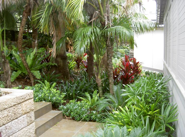 tropical garden designs for small gardens