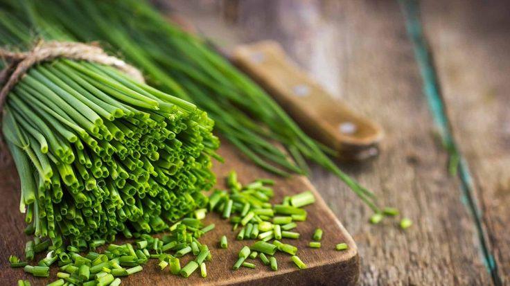 Γιατί πρέπει να χρησιμοποείτε βιολογικά βότανα για την υγεία σας