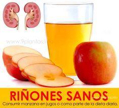 que alimentos no se puede comer con acido urico anemia e acido urico alto consecuencias de acido urico elevado