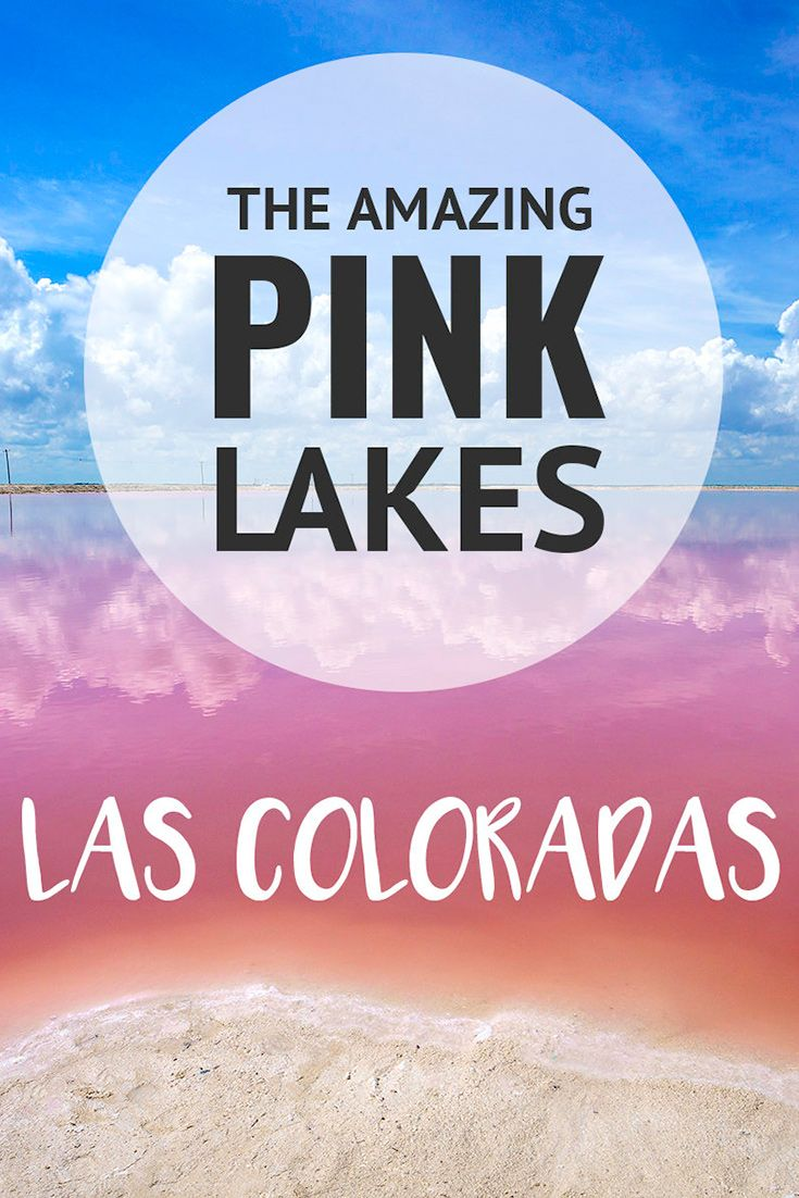 Visiting the pink lakes of Las Coloradas in Mexico. More at ExpertVagabond.com (scheduled via http://www.tailwindapp.com?utm_source=pinterest&utm_medium=twpin)