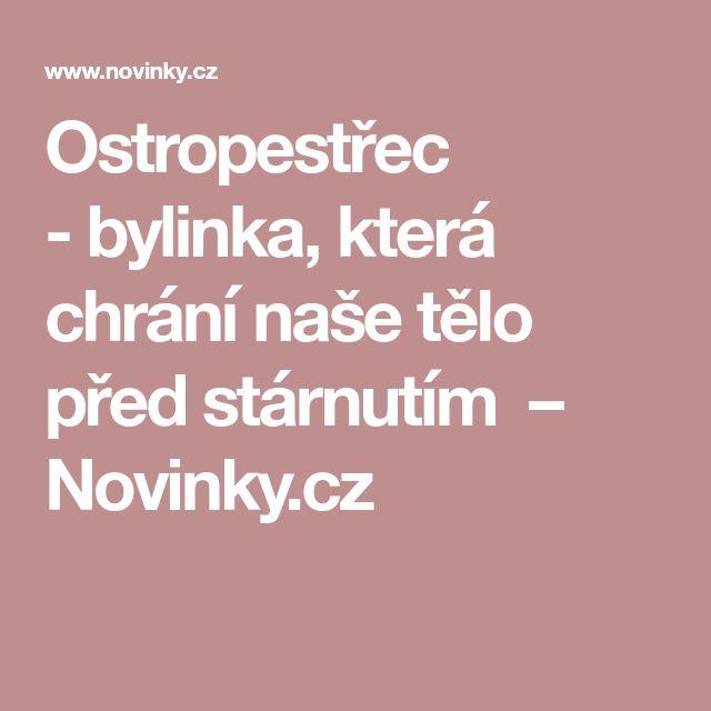 Ostropestřec -bylinka, která chrání naše tělo před stárnutím – Novinky.cz