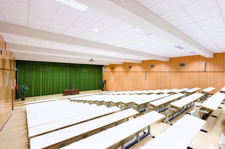 Uniwersytet Farmaceutyczny w Alcalá de Henares, Hiszpania, Armstrong, ceiling, sufity podwieszane, acoustic, sufit akustyczny, Optima