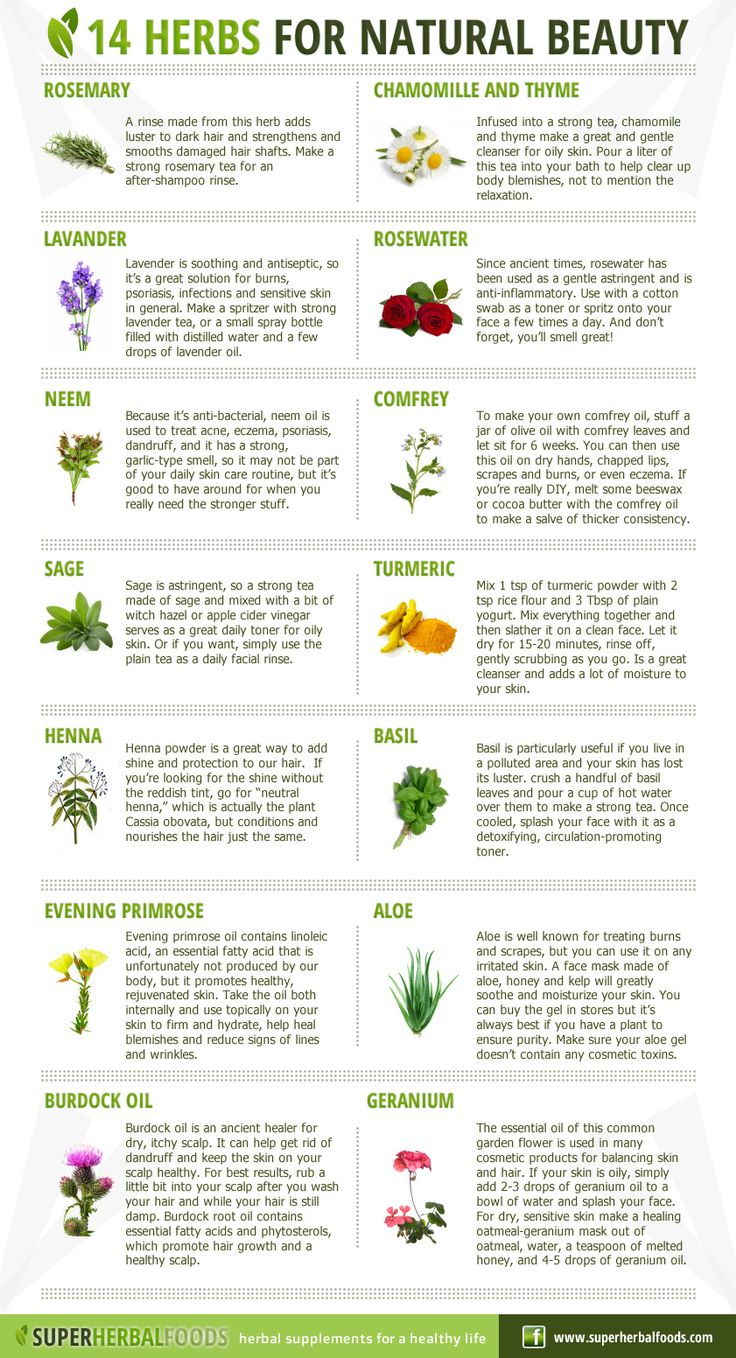 Super Herbal Foods – Natural Remedies - 14 Herbs for Natural beauty