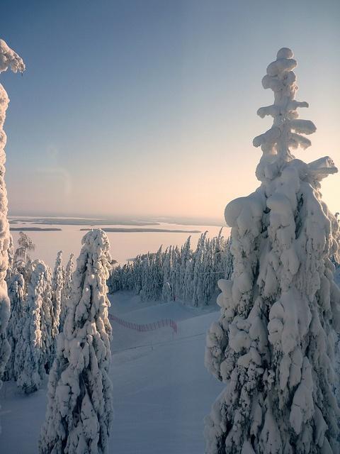 Koli National Park, Finland is soo pretty
