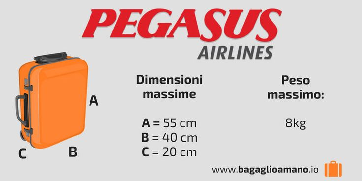 Pegasus airlines check-in online