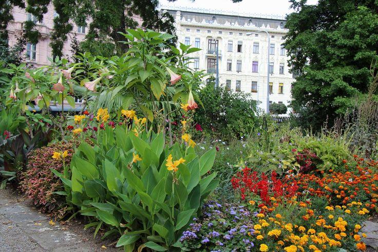 Botanicka Zahrada (Hortus Botanicus) (botanical garden) - Brno, Czech Republic