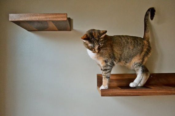 Give your kitties rule of the rafters with these walnut cat shelves.