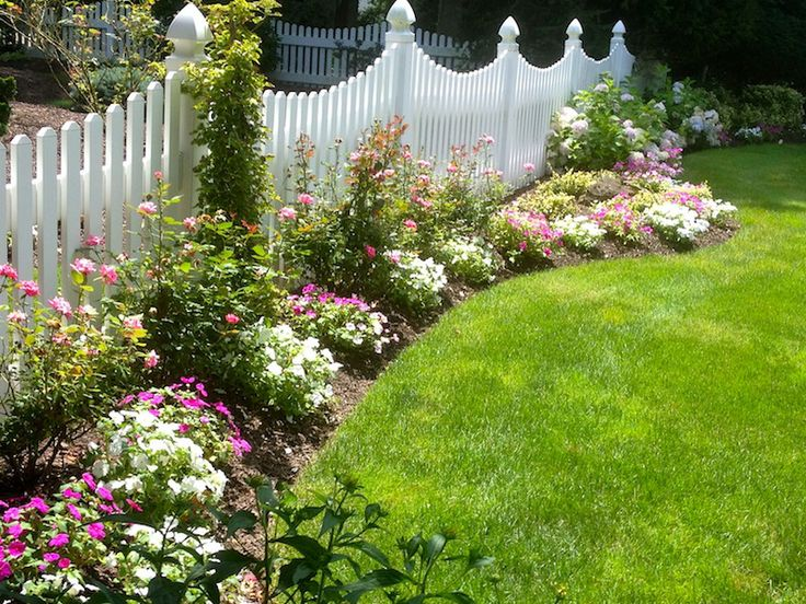 Flower Bed Privacy Hedges Landscaping Ideas Pinterest