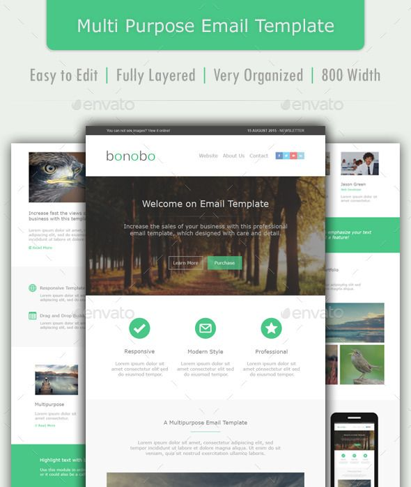 Bonobo - Multipurpose Email Template Templates and Email templates - professional email template