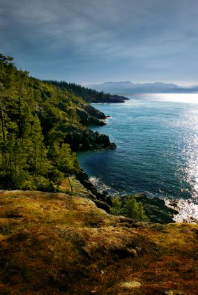 Vancouver Island, BC @shelby c Graves - you should check our her board, it has lots of great pics!