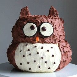 Birthday Owl Cake. Too adorable