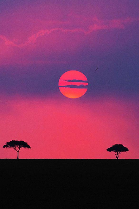 canislupvs:  Land of the Maasai (Kenya) || Aubrey Stoll