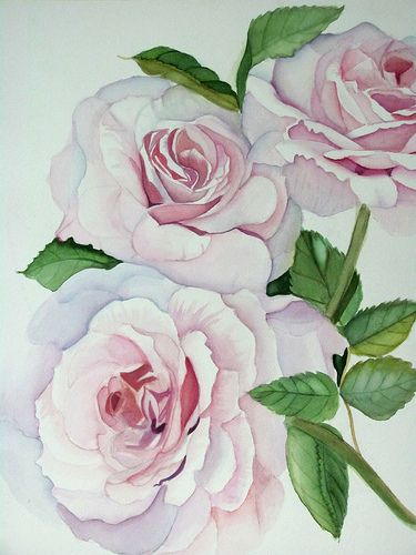 Triple Rose | Karen Park | Flickr