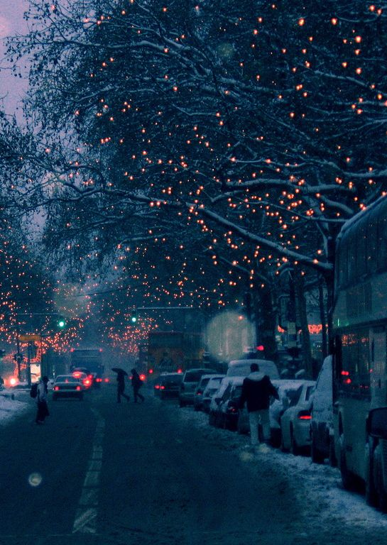 Drive around town to look at the Christmas lights