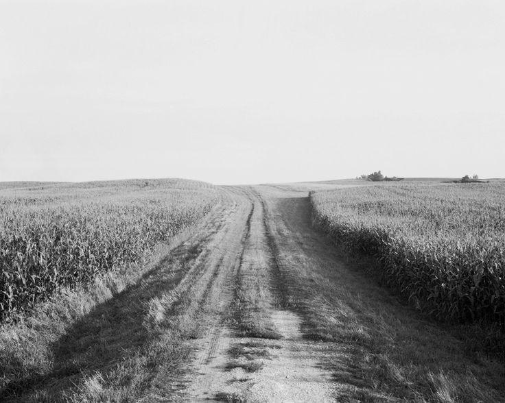 Iowa : Curtis Hamilton