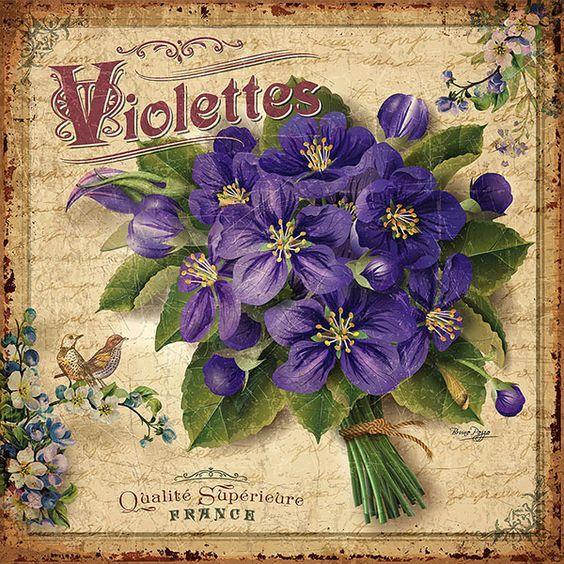 Violetas-Bruno+Pozzo-Vintage%2C+el+Glamour+de+Anta%C3%B1o.jpg (564×564)