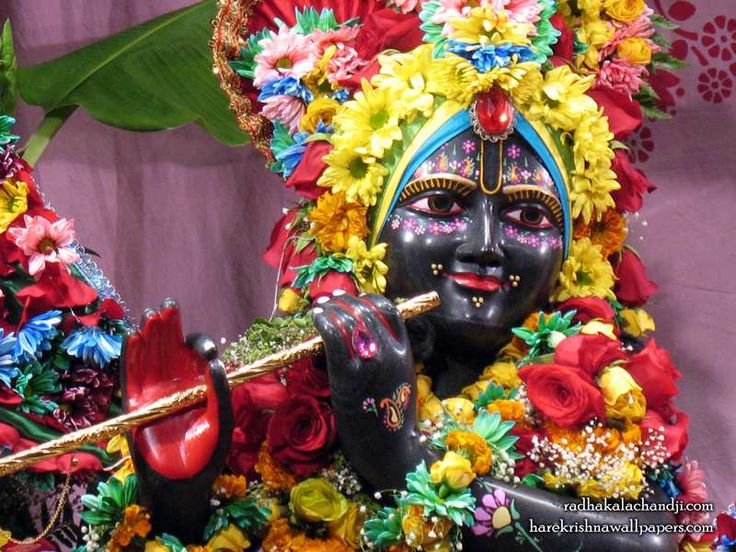 http://harekrishnawallpapers.com/sri-kalachanda-close-up-iskcon-dallas-wallpaper-003/