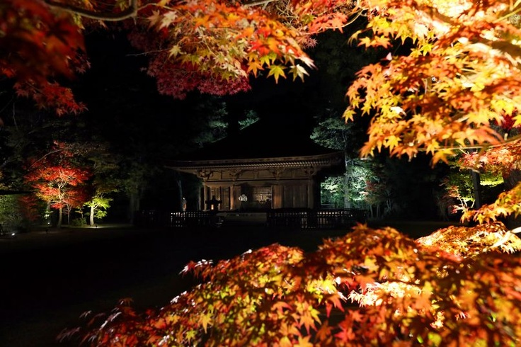 In disaster zone, temple illumination helps to lift spirits. IWAKI, Fukushima Prefecture—Post-disaster restoration work is complete at the Shiramizu Amidado hall, which is now lit up at night. PHOTO: Shiramizu Amidado hall in Iwaki, Fukushima Prefecture, a designated national treasure, is lit up on Nov. 9. (Takaharu Yagi)
