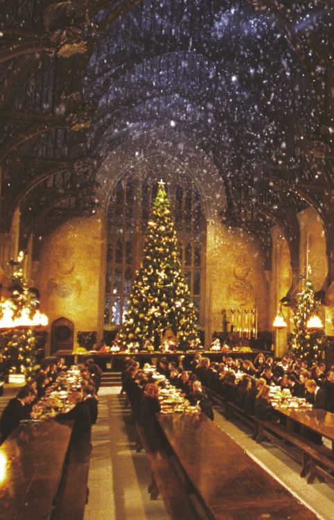 Two of my favorite things!! Christmas and harry potter!! ♡♥♥♥♡♡♡