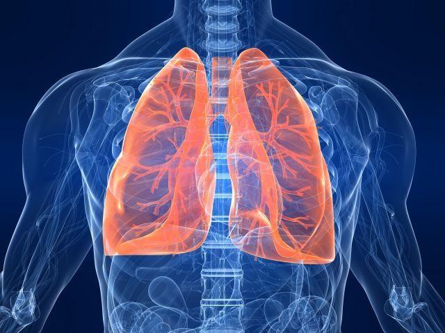 Recurrent pneumonia not common: lung expert  http://www.thenewstribe.com/2013/06/10/recurrent-pneumonia-not-common-lung-expert/