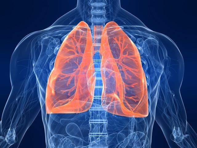 Recurrent pneumonia not common: lung expert  http://www.thenewstribe.com/2013/06/10/recurrent-pneumonia-not-common-lung-expert/