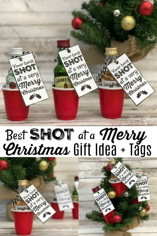 Best SHOT at a Merry Christmas – Fun Alcohol Gift Idea – Mama Cheaps