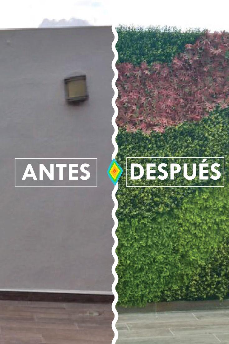 Antes y despu s jardines verticales huichol antes y for Jardines verticales introduccion