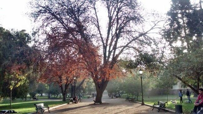 Parque Florestal - Santiago/Chile