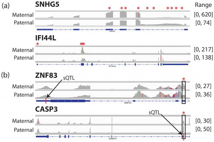 High-Resolution Transcriptome Analysis with Long-Read RNA Sequencing | RNA-Seq Blog