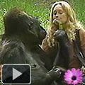 Empathy - Koko the gorilla, and Penny