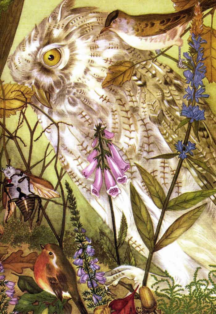 Thumbelina 2 of 3 (Illustrations to The Fairy Tale Book) - Adrienne Segur