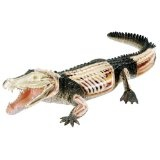 Revell  X-Ray 02095 - Krokodil