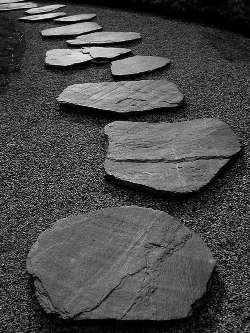 Stepping stones: Canvas Prints, Gardens Paths, Gardens Idea, Zen Gardens Design, Stones Pathways, Stones Paths, Step Stones, Beauty Gardens, Gardens Rocks
