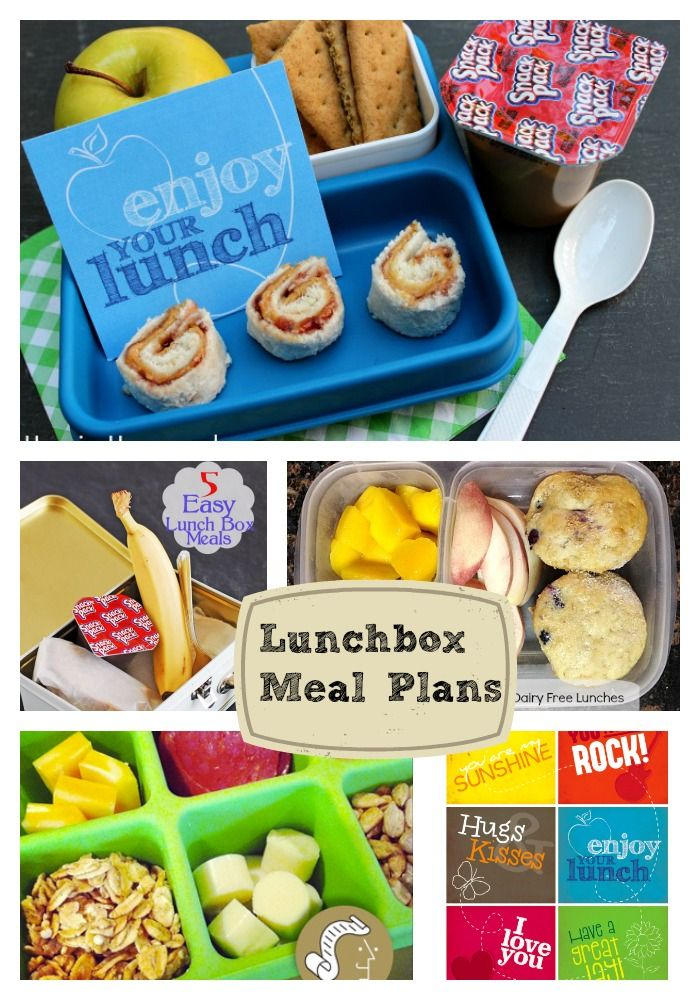 Do you need lunch box inspiration? Check out these Lunchbox Meal Plans from 7 different bloggers | The Happy Housewife