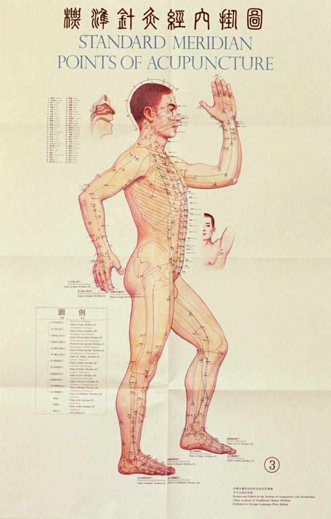Acupuncture for Weight Loss: What You Need to Know