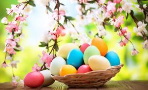 Happy Easter to everybody! #EatorganicBio