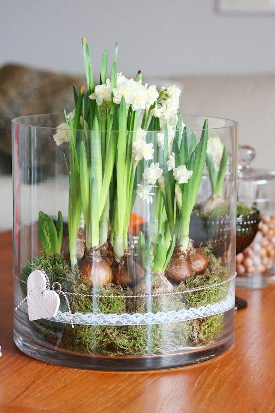 Superschöne Idee für Frühjahra-Deko mit Frühblühern