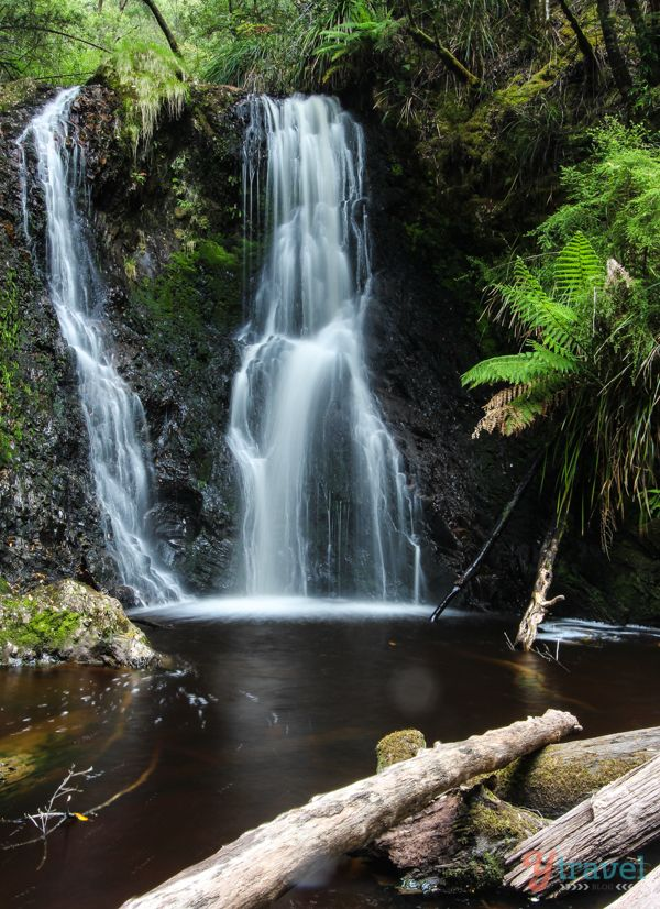 Hogarth Falls, Tasmania - Australia Travel